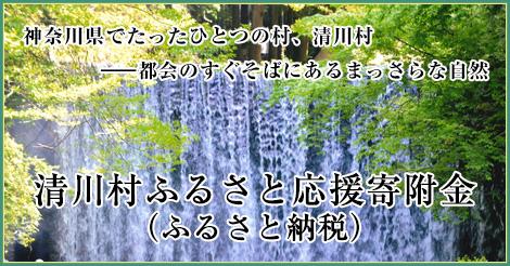 清川村ふるさと応援寄附金(ふるさと納税)