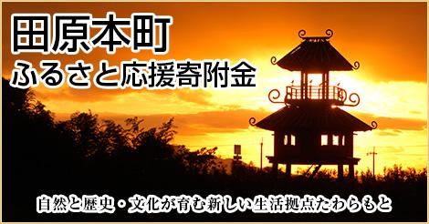 田原本町ふるさと納税