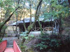 場 赤池 キャンプ
